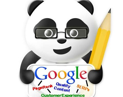 What Is Google Panda Update and More About It